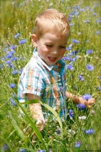blueflowerboy